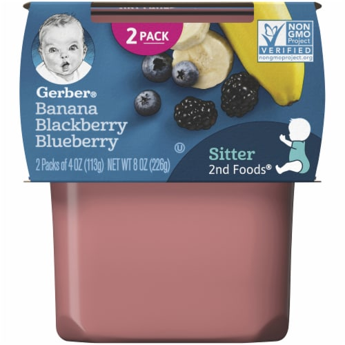 Gerber Banana Blackberry Blueberry Stage 2 Baby Food 2 Count Perspective: front