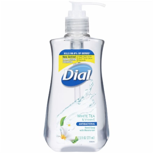 Dial Complete White Tea Antibacterial Liquid Hand Soap Perspective: front
