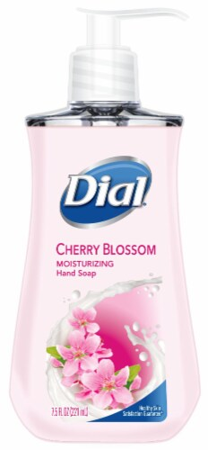 Dial Cherry Blossom Hand Soap Perspective: front