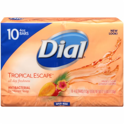Dial® Tropical Escape® Antibacterial Deodorant Bar Soap Perspective: front