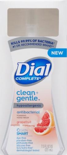 Dial Complete Clean + Gentle Grapefruit Antibacterial Foaming Hand Wash Perspective: front