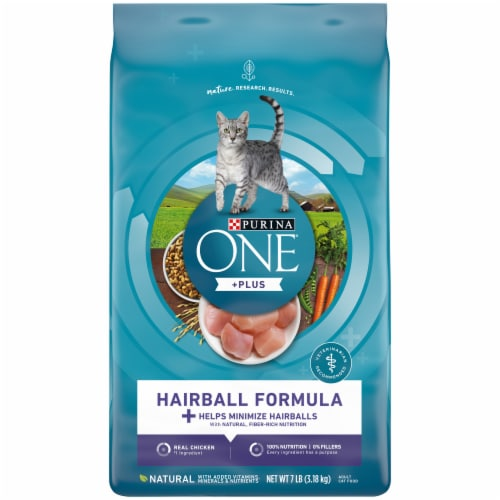 Purina ONE Hairball Formula Natural Dry Cat Food Perspective: front