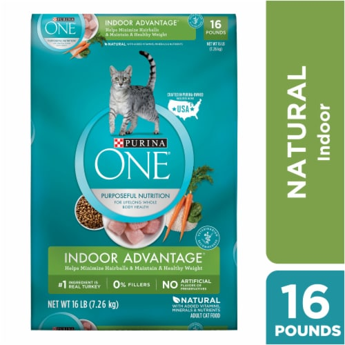 Purina ONE Indoor Advantage Hairball & Weight Control Natural Cat Food Perspective: front