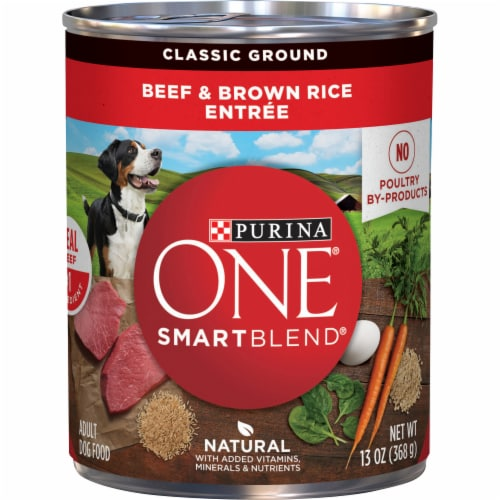 Purina ONE SmartBlend Beef & Brown Rice Entree Adult Wet Dog Food Perspective: front