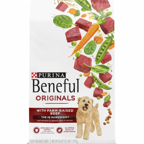 Beneful Originals with Real Beef Dry Dog Food Perspective: front