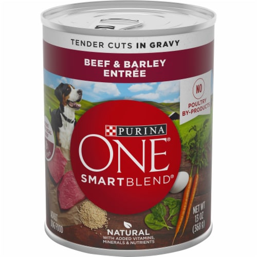 Purina ONE Natural SmartBlend Tender Cuts in Gravy Beef & Barley High Protein Wet Dog Food Perspective: front