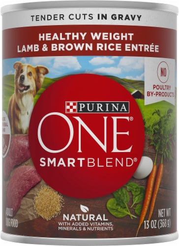 Purina ONE SmartBlend Healthy Weight Tender Cuts Lamb & Brown Rice Entree Adult Wet Dog Food Perspective: front