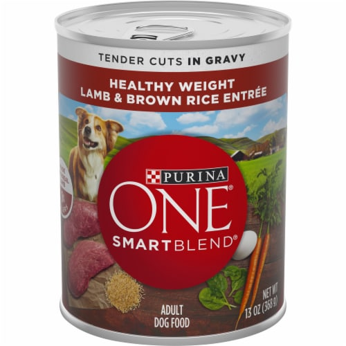 Purina One Smart Blend Lamb & Brown Rice Adult Wet Dog Food Perspective: front