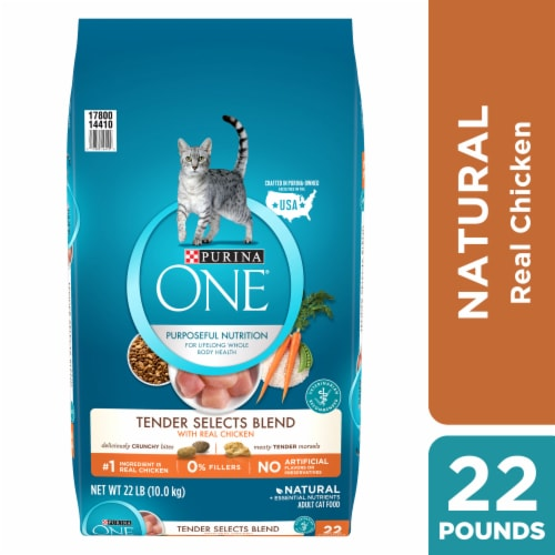 Purina ONE Tender Selects Blend with Real Chicken Natural Dry Cat Food Perspective: front