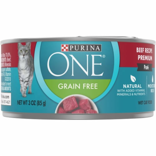 Purina ONE Grain Free Natural Beef Recipe Pate Wet Cat Food Perspective: front