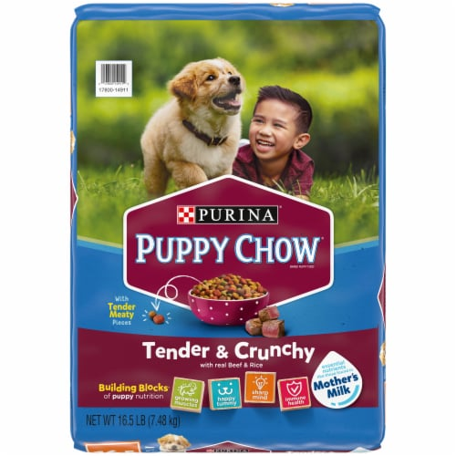 Puppy Chow® Healthy Start Nutrition Tender & Crunchy with Real Beef & Rice Dry Puppy Food Perspective: front