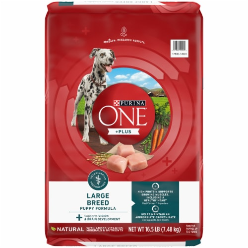Purina ONE SmartBlend Large Breed Puppy Formula Dry Dog Food Perspective: front