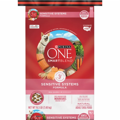 Purina ONE SmartBlend Sensitive Systems Formula Natural Dry Adult Dog Food Perspective: front