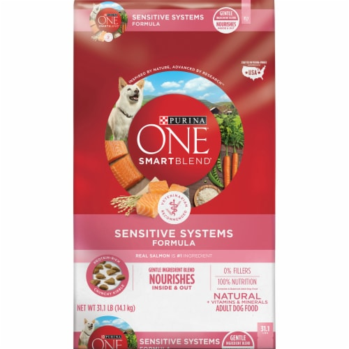 Purina ONE Smartblend Sensitive Systems Formula Dry Adult Dog Food Perspective: front