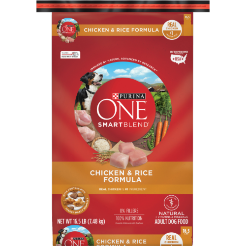Purina ONE SmartBlend Chicken & Rice Formula Natural Dry Dog Food Perspective: front