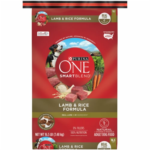 Purina ONE SmartBlend Lamb & Rice Formula Natural Dry Adult Dog Food Perspective: front