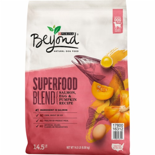 Beyond Superfood Blend Salmon Egg & Pumpkin Recipe Adult Dry Natural Dog Food Perspective: front