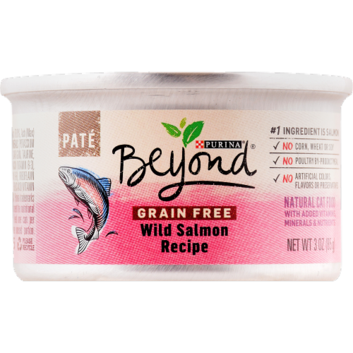 Beyond® Grain-Free Wild Salmon Recipe Pate Wet Cat Food Perspective: front