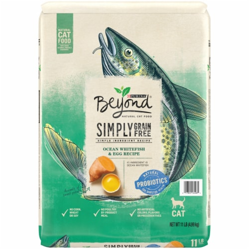 Beyond Grain Free Ocean Whitefish & Egg Recipe Adult Dry Cat Food Perspective: front