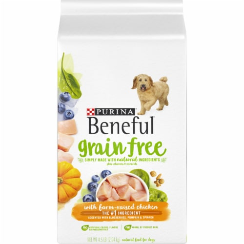 Beneful Grain Free with Farm-Raised Chicken Natural Dry Dog Food Perspective: front