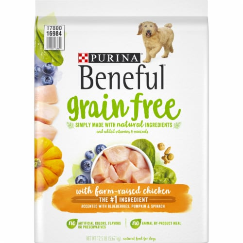 Beneful Grain Free with Real Farm-Raised Chicken Natural Dry Dog Food Perspective: front