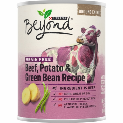 Beyond Grain Free Beef Potato & Green Bean Recipe Wet Dog Food Perspective: front