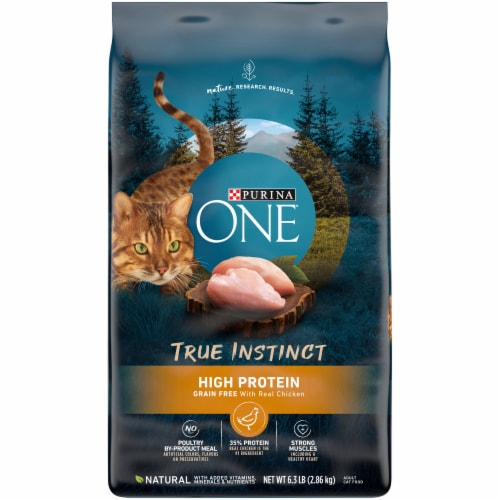 Purina ONE True Instinct Grain Free with Real Chicken Natural Dry Cat Food Perspective: front