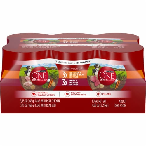 Purina ONE SmartBlend Tender Cuts in Gravy Wet Dog Food Variety Pack Perspective: front