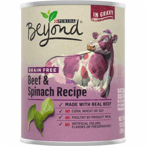 Beyond Grain Free Beef & Spinach Recipe Wet Dog Food Perspective: front