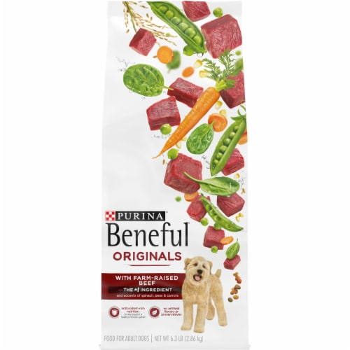 Beneful Originals with Real Beef Dry Adult Dog Food Perspective: front