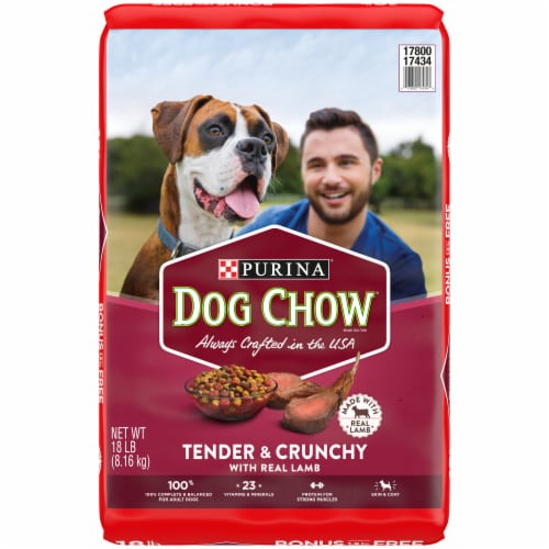 Dog Chow Tender & Crunchy with Real Lamb Adult Dry Dog Food Perspective: front
