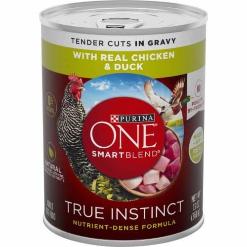 Purina ONE SmartBlend True Instinct Real Chicken & Duck in Gravy Adult Wet Dog Food Perspective: front