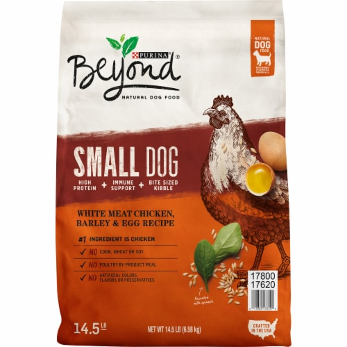 Beyond White Meat Chicken Barley & Egg Recipe Dry Small Dog Food Perspective: front