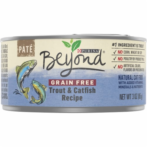 Beyond Grain Free Trout & Catfish Recipe Pate Wet Cat Food Perspective: front