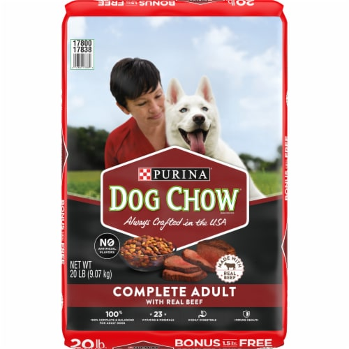Dog Chow Complete Adult with Real Beef Dry Dog Food Perspective: front