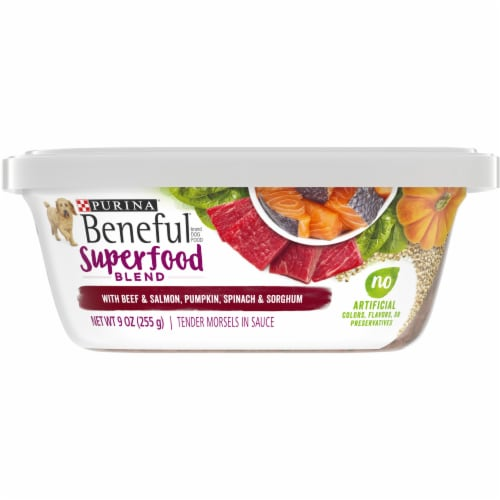 Beneful Superfood Blend Dog Food Perspective: front
