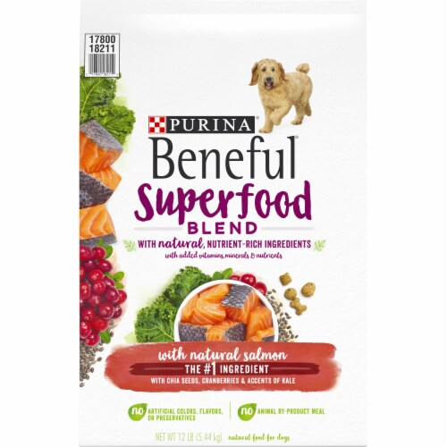 Beneful Superfood Blend Salmon Dry Dog Food Perspective: front
