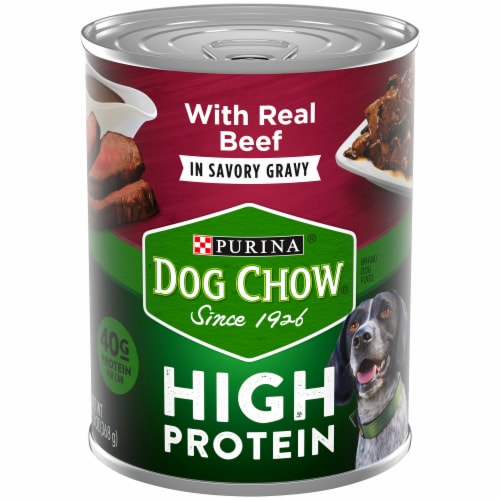 Dog Chow High Protein with Real Beef in Savory Gravy Wet Dog Food Perspective: front