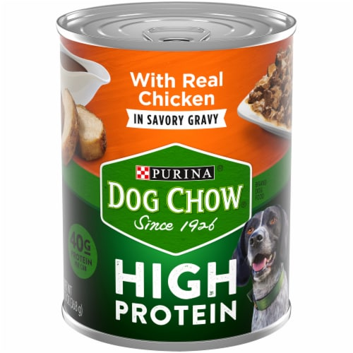 Dog Chow High Protein with Real Chicken in Savory Gravy Wet Dog Food Perspective: front