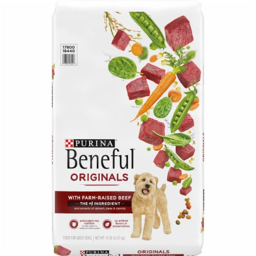 Beneful Originals with Real Beef Adult Dog Food Perspective: front