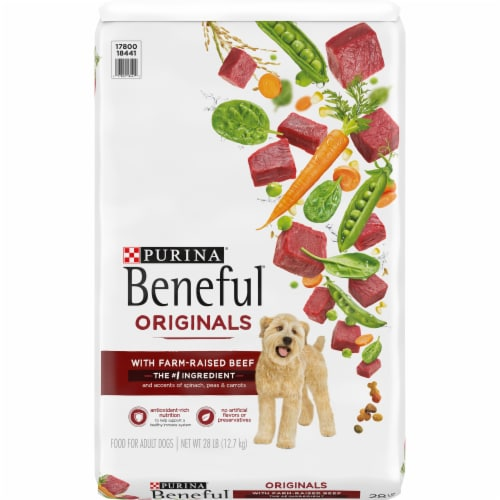 Beneful Originals with Real Beef Adult Dry Dog Food Perspective: front