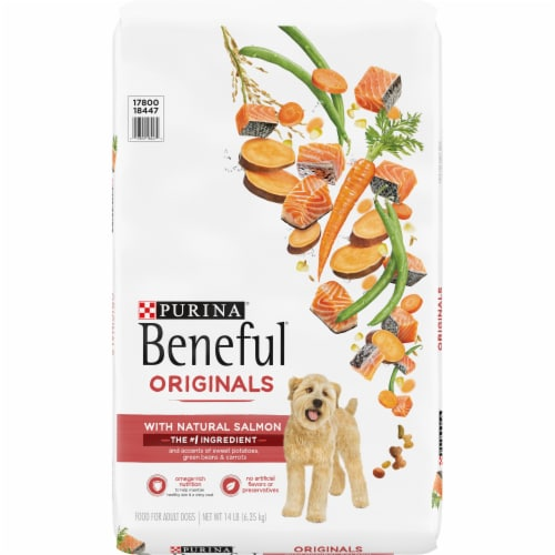 Beneful Originals Salmon Adult Dog Food Perspective: front