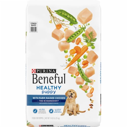 Purina Beneful Healthy Puppy With Real Chicken Dry Dog Food Perspective: front