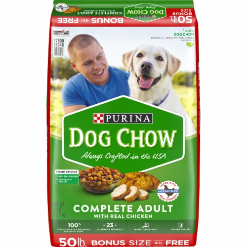 Dog Chow Complete Adult Dry Dog Food with Real Chicken Perspective: front