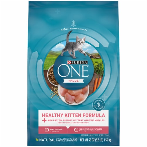 Purina ONE Healthy Kitten Formula Natural Dry Kitten Food Perspective: front