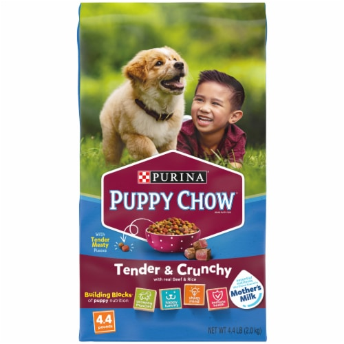 Puppy Chow Healthy Start Nutrition Tender & Crunchy with Real Beef & Rice Dry Puppy Food Perspective: front