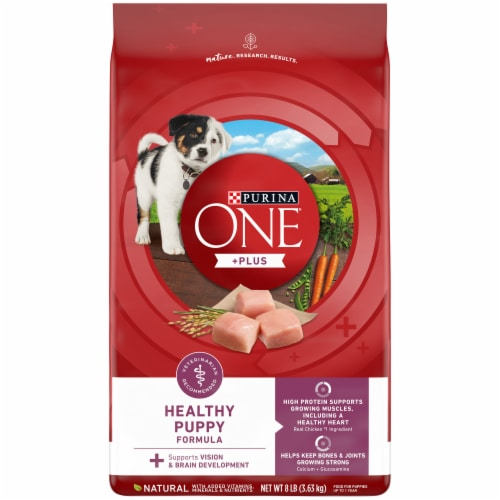 Purina ONE SmartBlend Healthy Puppy Formula Natural Dry Puppy Food Perspective: front