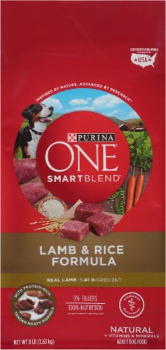 Purina ONE SmartBlend Lamb & Rice Formula Natural Dry Dog Food Perspective: front