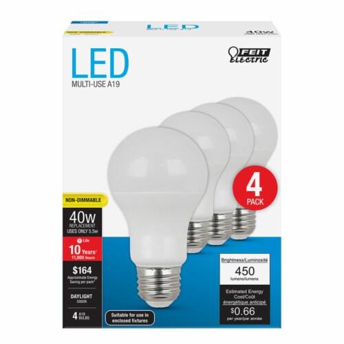 Feit Electric 5.5-Watt (40-Watt) A19 E26 LED Light Bulbs Perspective: front