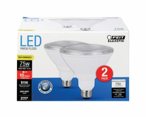Feit Electric 75 Watt PAR38 Flood Daylight LED Lightbulbs Perspective: front